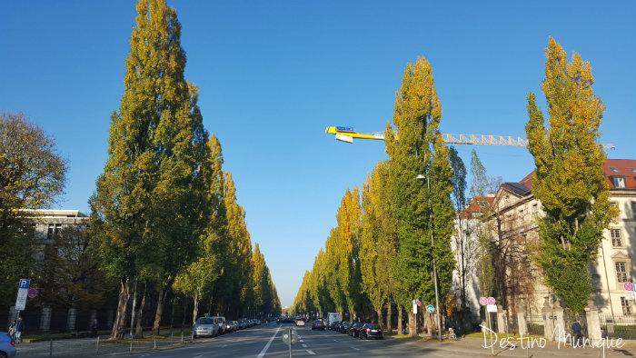 Leopoldstrasse-Munique-Alemanha-2