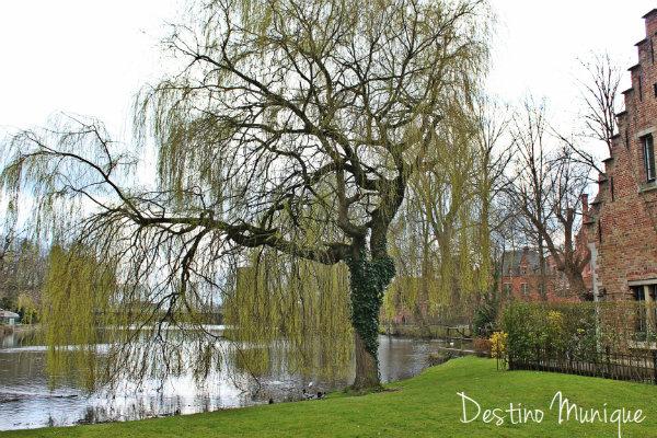 Lago-Bruges-Belgica