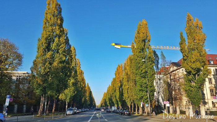 Leopoldstrasse-Munique-Outono-2015