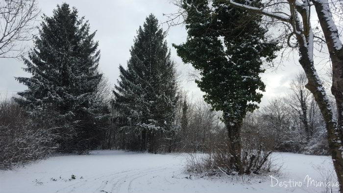 inverno-munique-alemanha