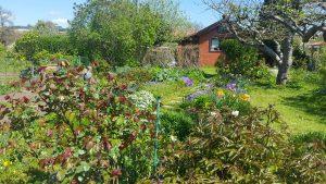 Gartenanlagen, Gartenbau, Jardins, Munique, Horta