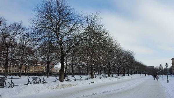 Como é o mês de janeiro em Munique, Alemanha