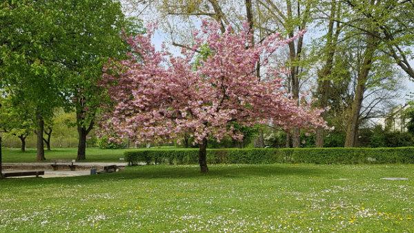 Abril em Munique, dicas, como é o tempo
