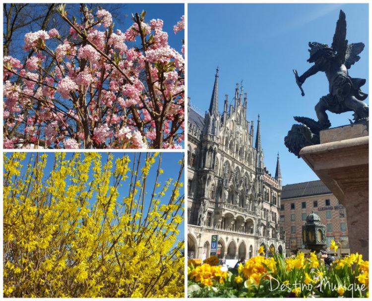Marco-Munique-Primavera