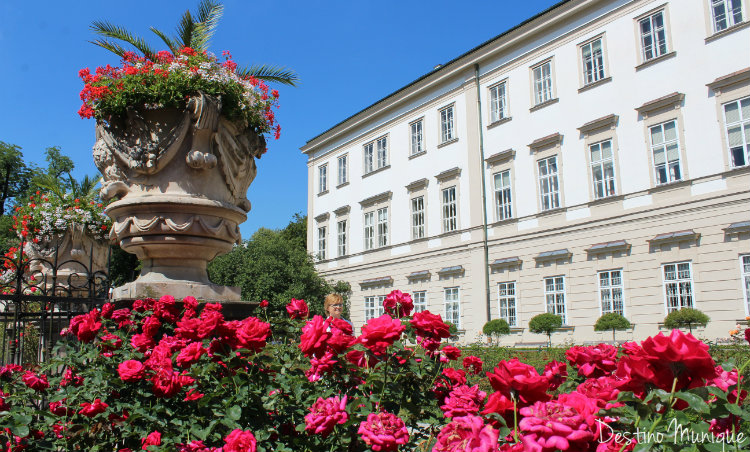 Salzburgo-Dicas-Mirabel-Rosas