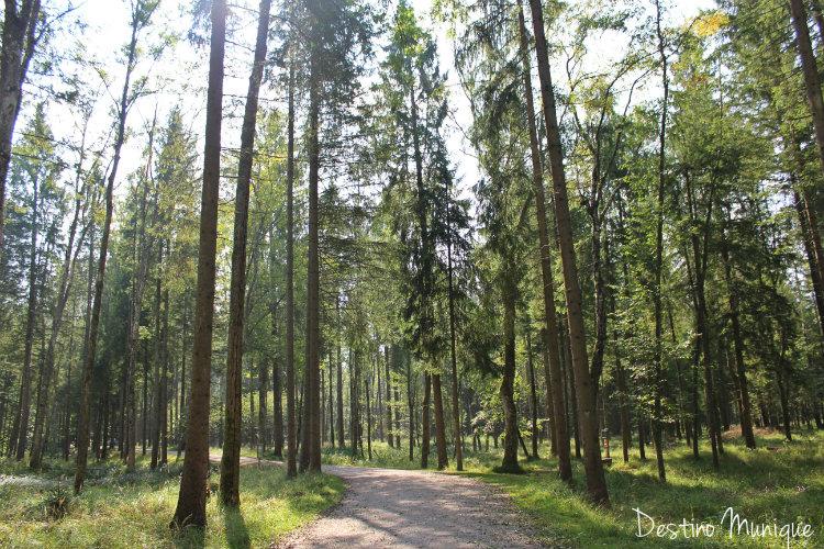 Landsberg-Lechpark-Wildpark