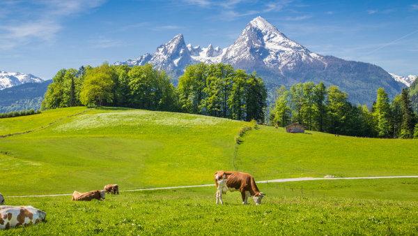 Tour nos Alpes, Mittenwald, Garmisch, Oberammergau, Guia brasileira na Alemanha, Munique