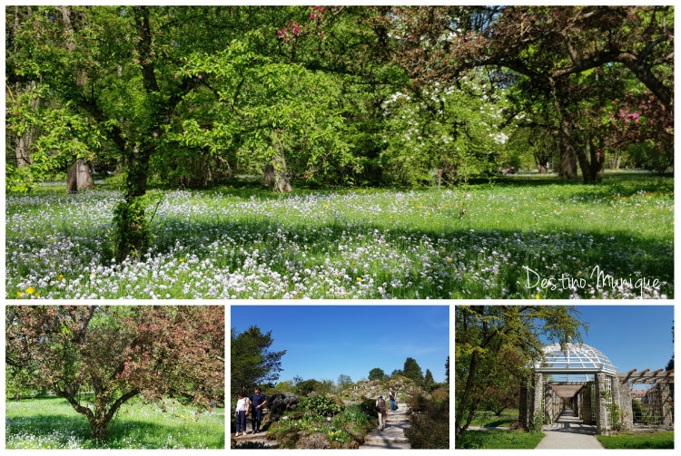 Jardim-Botanico-Jardins