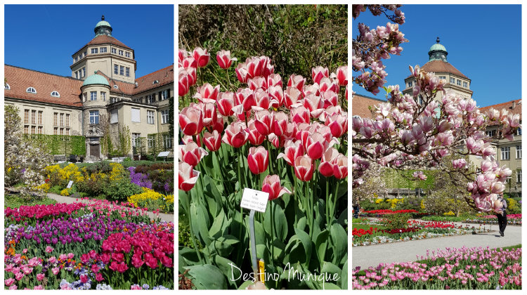 Primavera-Munique-Jardim-Botanico