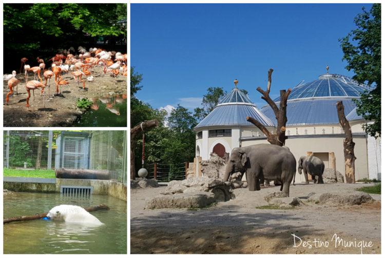 Zoologico-Alemanha-Munique