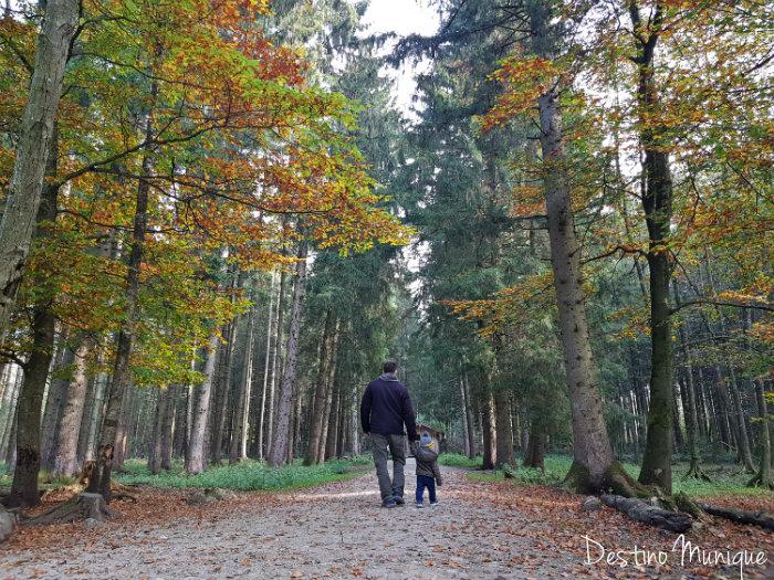 Bergtierpark-Blindham-Floresta